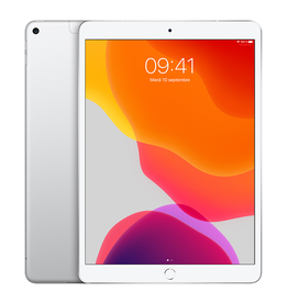 APPLE iPad Air 10,5 po Wi-Fi + Cellulaire 64 Go - Argent