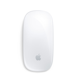APPLE Magic Mouse 2 - Argent