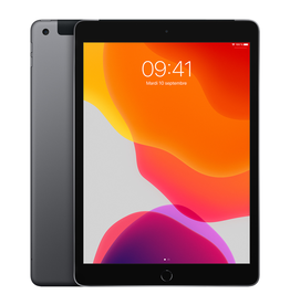 APPLE iPad 10,2 po Wi-Fi + Cellulaire 32 Go - Gris cosmique