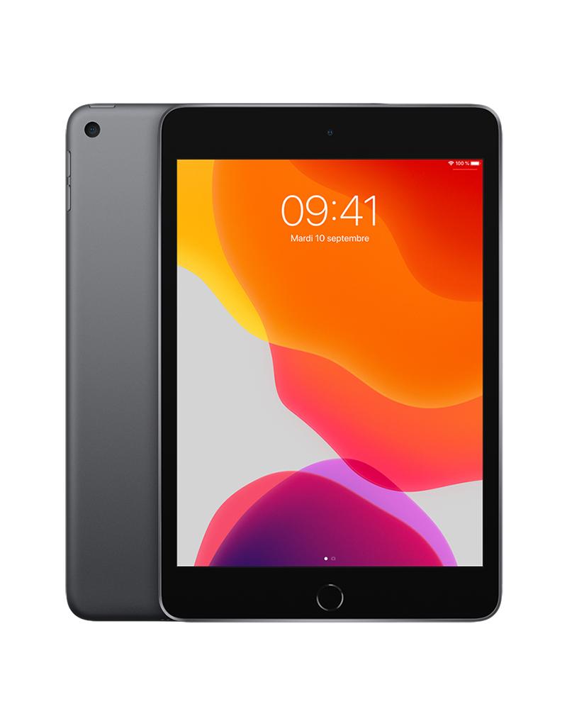 APPLE iPad mini Wi-Fi 256 Go - Gris cosmique