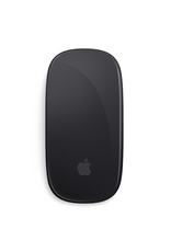 APPLE Magic Mouse 2 - Gris cosmique