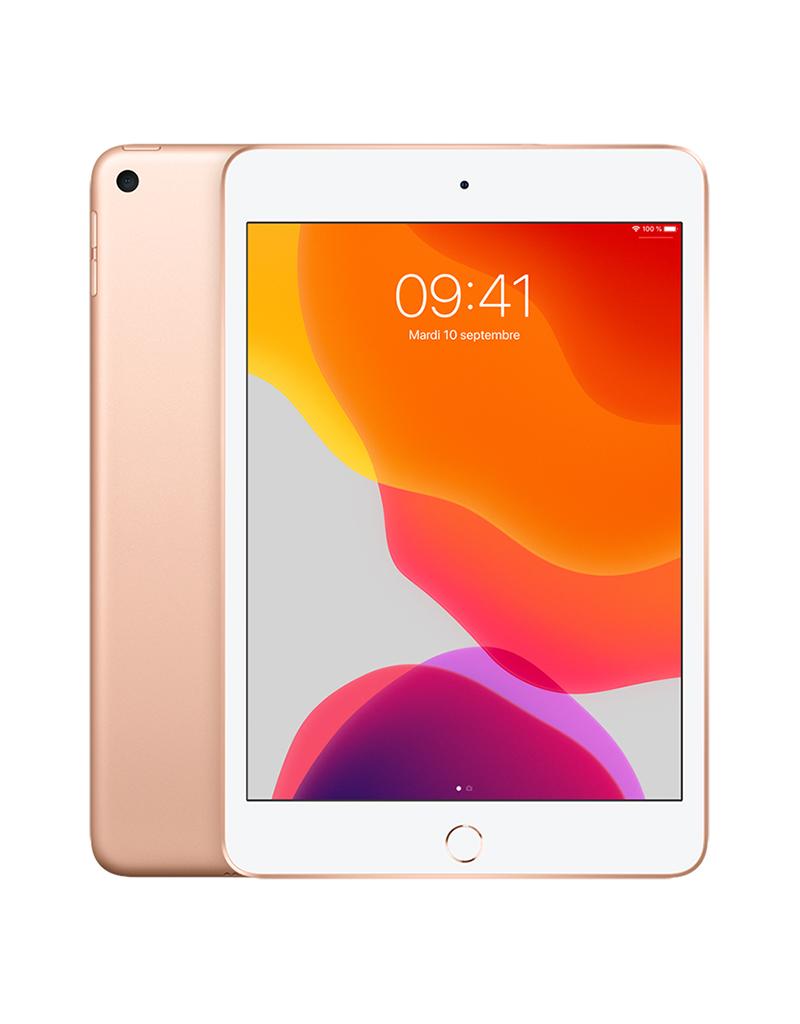 APPLE iPad mini Wi-Fi 64 Go - Or