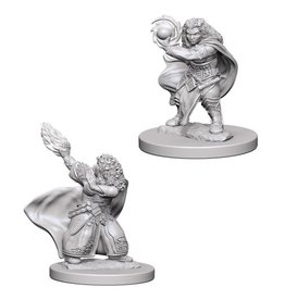 WizKids D&D Minis (unpainted): Dwarf Wizard (female) Wave 4, 72621