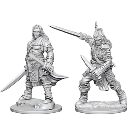WizKids Pathfinder Minis (unpainted): Human Fighter (male) Wave 1, 72596