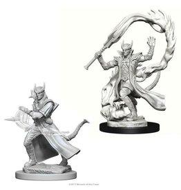 WizKids D&D Minis (unpainted): Tiefling Sorcerer (male) Wave 4, 73201