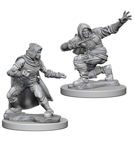 WizKids Pathfinder Minis (unpainted): Human Rogue (male) Wave 1, 72602