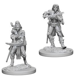 WizKids Pathfinder Minis (unpainted): Elf Bard (female) Wave 4, 72611