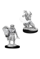 WizKids D&D Minis (unpainted): Human Druid (male) Wave 6, 73390
