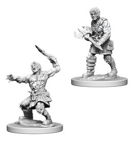 White Wizard Games D&D Minis (unpainted): Nameless One Wave 6, 73398