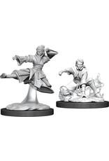 WizKids D&D Minis (unpainted) Human Monk (female) Wave 11, 90008