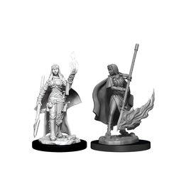 WizKids Pathfinder Minis (unpainted): Human Oracle (female) W11