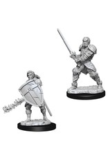 WizKids D&D Minis (unpainted): Human Fighter (male) Wave 8, 73673