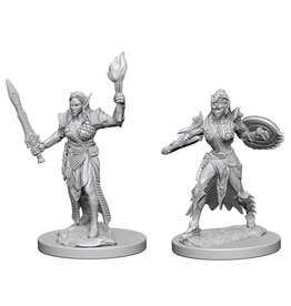 WizKids Pathfinder Minis (unpainted): Elf Fighter (female) Wave 1, 72599