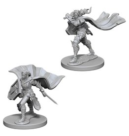 WizKids Pathfinder Minis (unpainted): Elf Paladin (female) Wave 4, 72609
