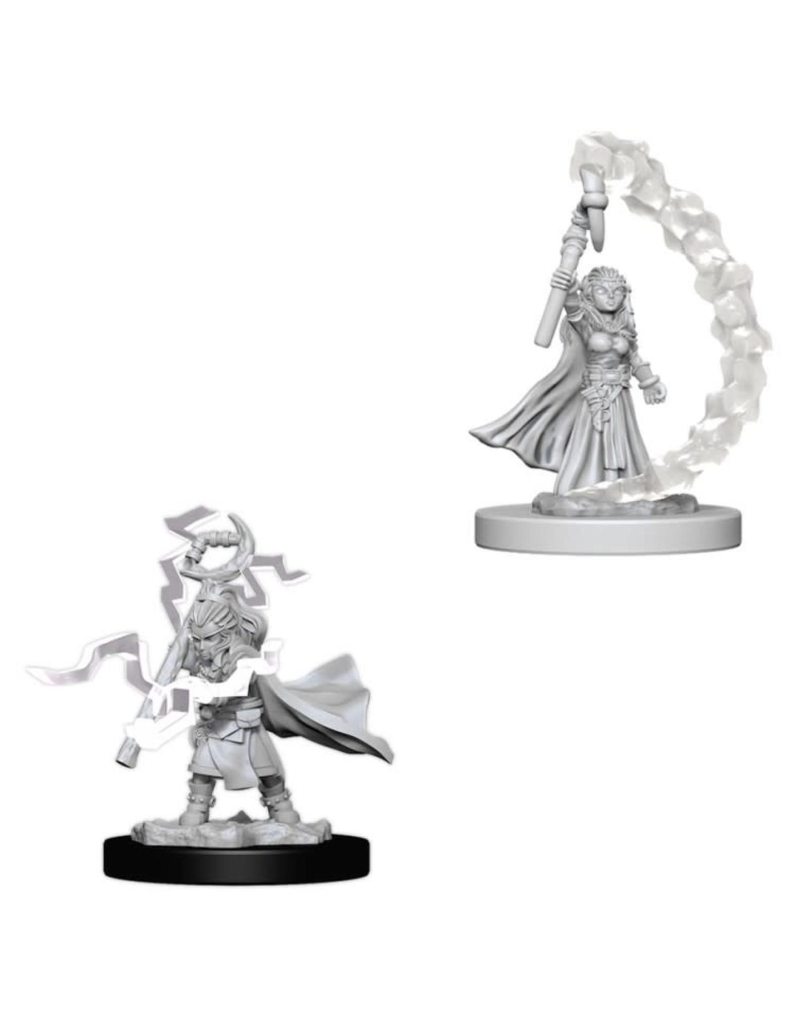WizKids Pathfinder Minis (unpainted): Gnome Sorcerer (female) Wave 5, 73345