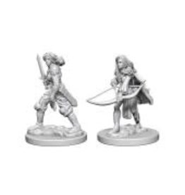 WizKids Pathfinder Minis (unpainted): Human Fighter (female) Wave 1, 72597