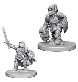 WizKids D&D Minis (unpainted): Dwarf Paladin (female)