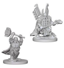 WizKids D&D Minis (unpainted): Dwarf Paladin (male)