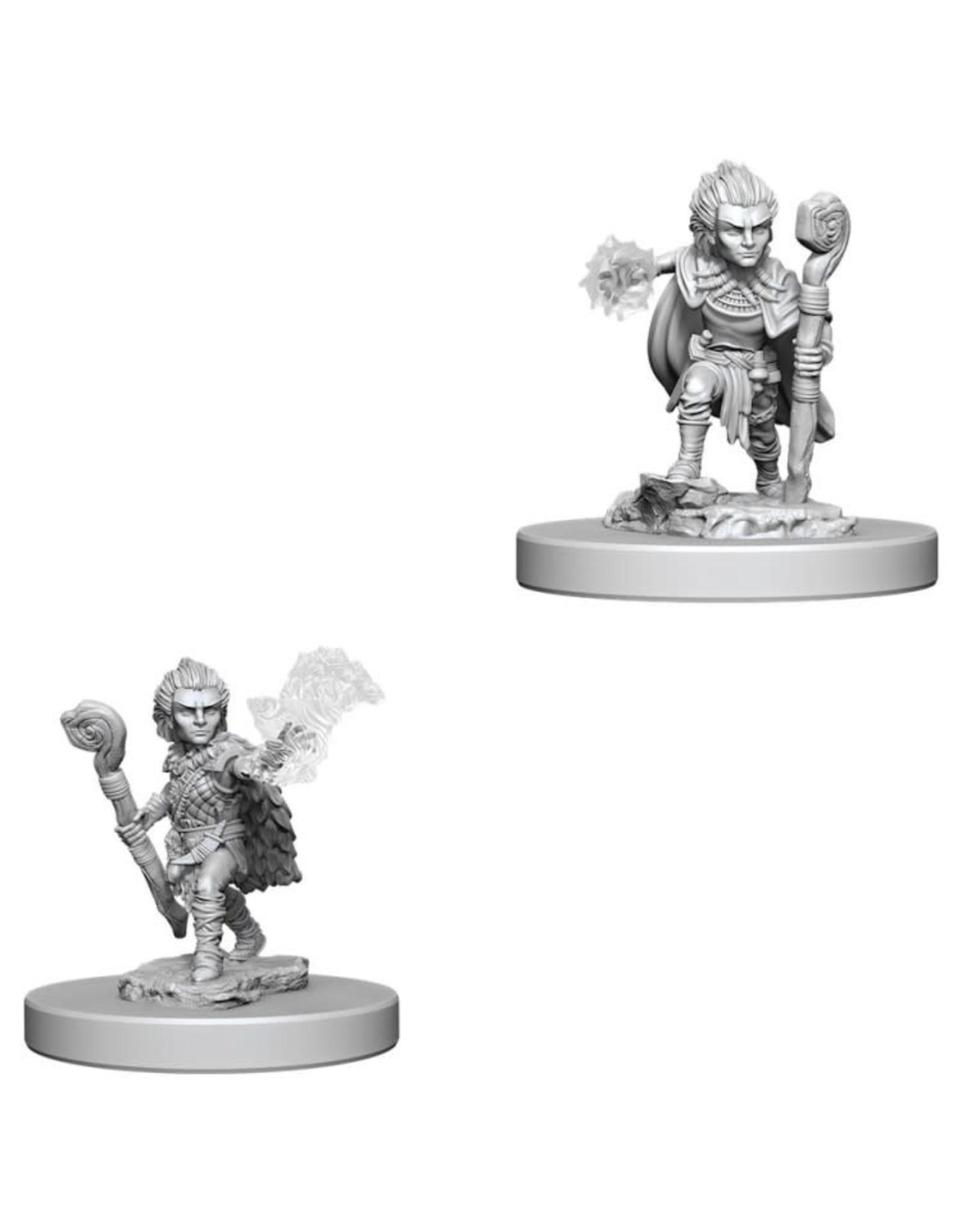 WizKids Pathfinder Minis (unpainted): Gnome Druid (male) Wave 5, 73346