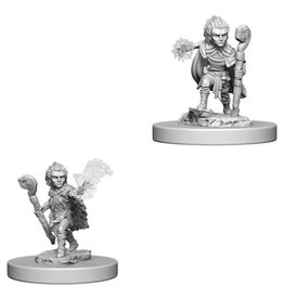 WizKids Pathfinder Minis (unpainted): Gnome Druid (male) Wave 5, 73346