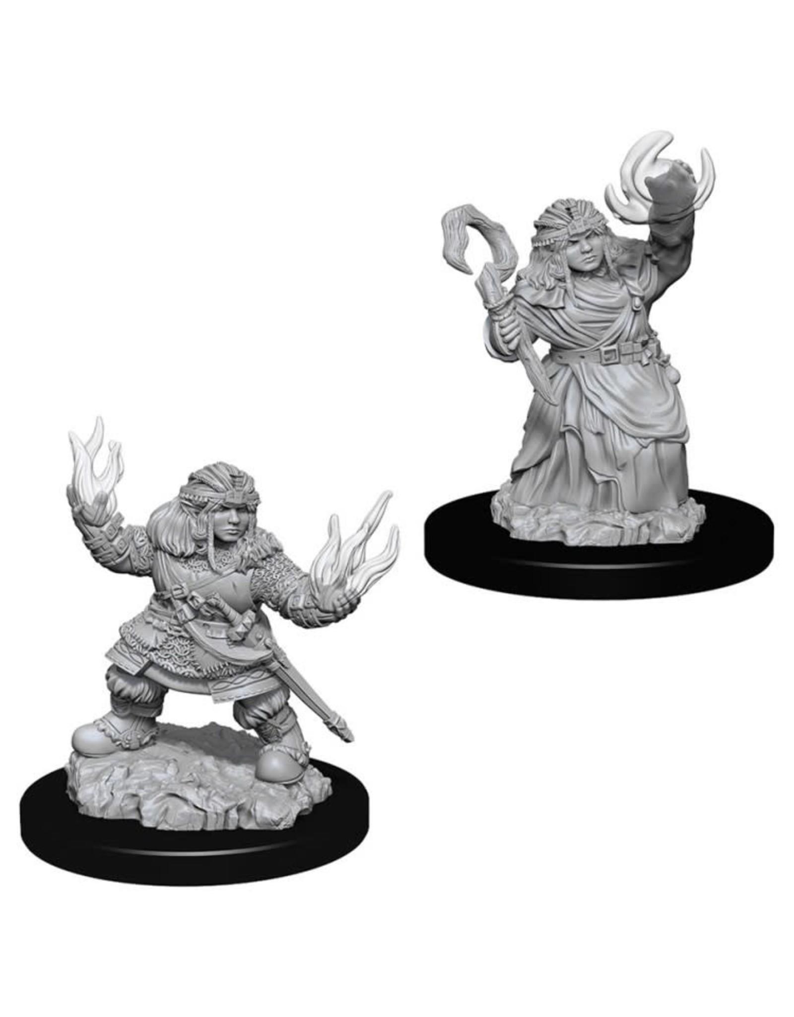 WizKids Pathfinder Minis (unpainted): Dwarf Summoner (female) Wave 7, 73543