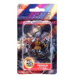 WizKids D&D Minis: Premium (painted) Dragonborn Fighter (male) Wave 1, 93004