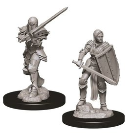 WizKids D&D Minis (unpainted): Human Fighter (female) Wave 9, 73705