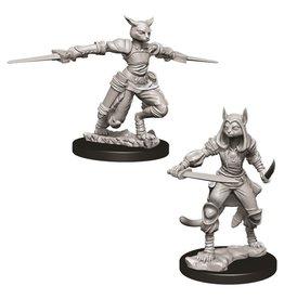 WizKids D&D Minis (unpainted): Tabaxi Rogue (female)