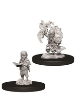WizKids Pathfinder Minis (unpainted): Gnome Sorcerer (male) Wave 9, 73722