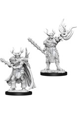 WizKids Pathfinder Battles Deep Cuts (unpainted): Half-Orc Druid (male)