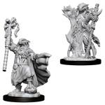 WizKids D&D Minis (unpainted) Dragonborn Sorcerer (female) Wave 8, 73674