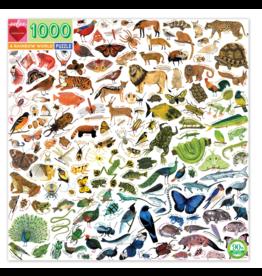 eeBoo A Rainbow World 1000p