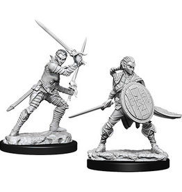 WizKids Pathfinder Minis (unpainted): Elf Fighter (female) Wave 6, 73410