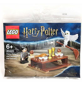 LEGO Lego Harry Potter and Hedwig Owl Delivery
