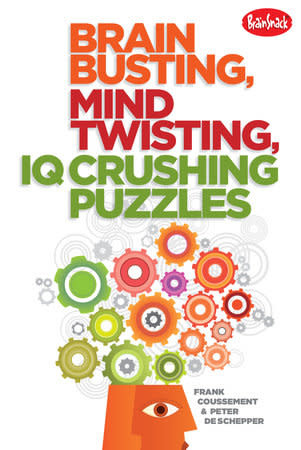 puzzlebookcover