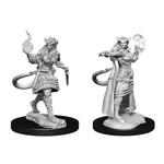 WizKids D&D Minis (unpainted) Tiefling F Sorcerer W15 90304