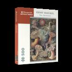 Pomegranate Ernst Haeckel: Sea Anemones (500p)