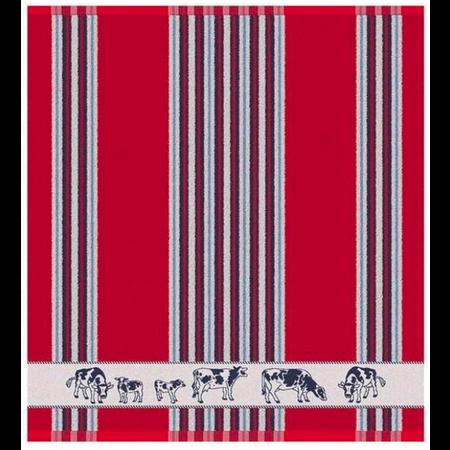 Tea Towel Red Frisian Cows DDDDD