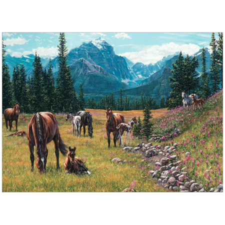 Horse Meadow Puzzle 1000pc
