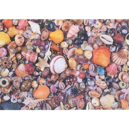 Sea Shells Puzzle 1000pc