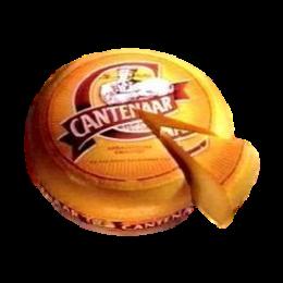 Cantenaar