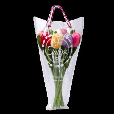 Tulip Gift Bag