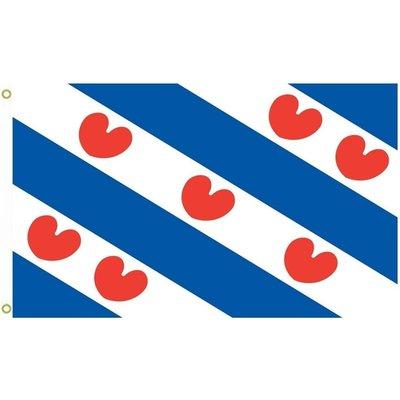 Friesland Flag 3x5
