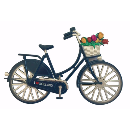 Blue Bike with Flowers Magnet