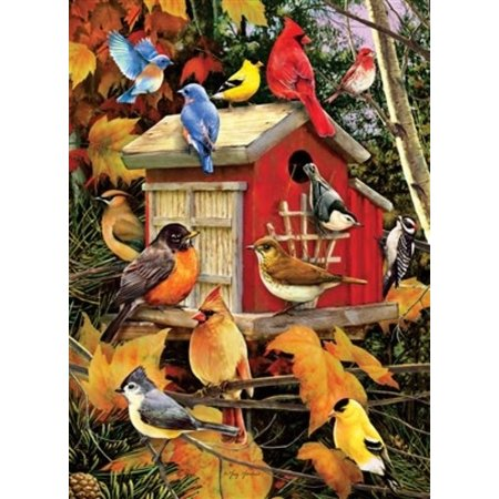 Fall Birds Puzzle 1000pc