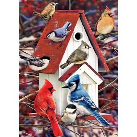 Winter Birdhouse Puzzle 1000pc