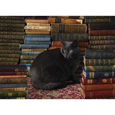 Library Cat Puzzle 1000pc