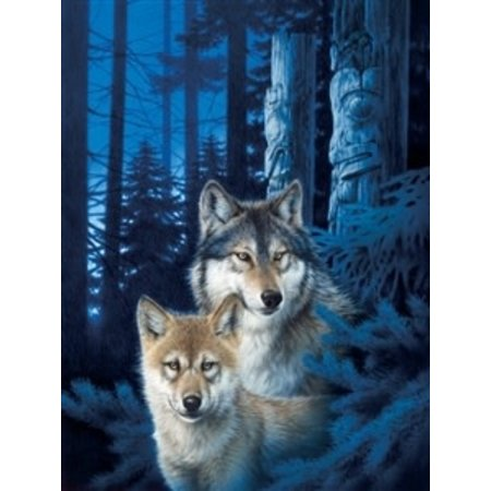Wolf Canyon Puzzle 1000pc
