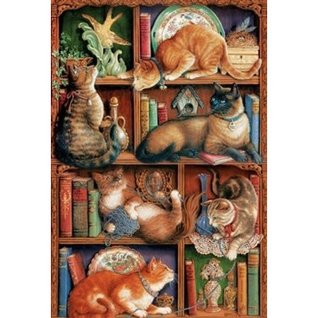 Feline Bookcase Puzzle 2000pc