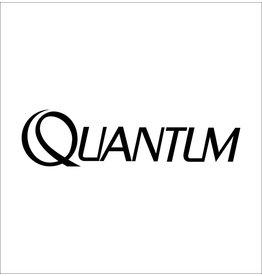 Quantum WORM SHAFT DRIVE GEAR